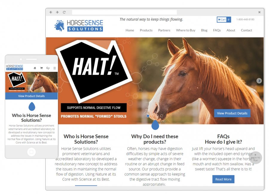 Horse Sense Website and Mobile Design