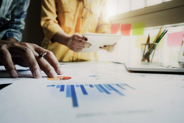Auditing Web Presence