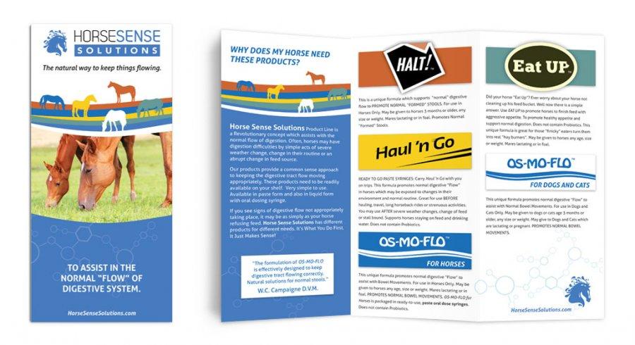Horse Sense - Tri-fold Brochure
